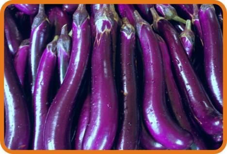 新鲜蔬菜配送-茄子