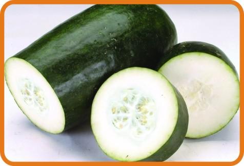 新鲜蔬菜配送-冬瓜